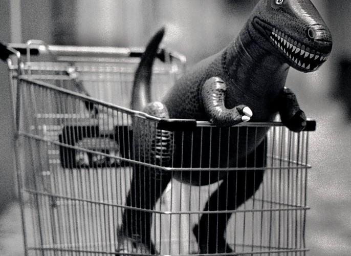 shopping cart - dinosaur - returns